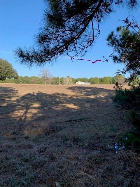 413 Blue Grass Ln, Bastrop, TX 78602 (#2452795) :: The Gregory Group