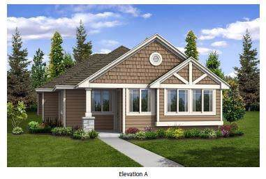 17905 Lungo, Pflugerville, TX 78660 (#2489672) :: Ana Luxury Homes