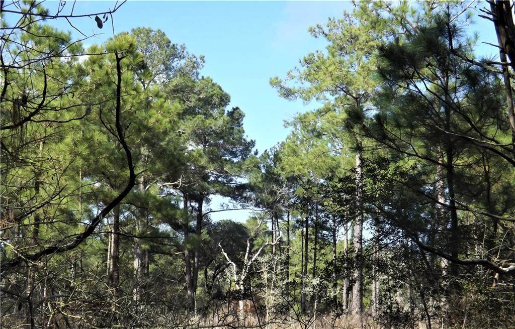 1096-1098 Pine Crest Dr - Photo 1