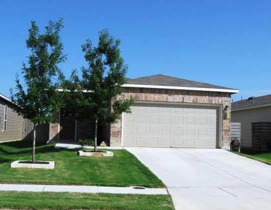 148 Elderberry, New Braunfels, TX 78130 (#2559212) :: RE/MAX IDEAL REALTY