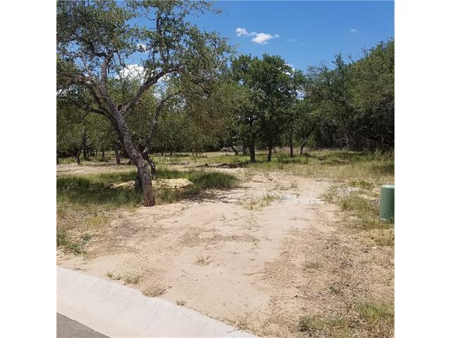 310 Waters Edge Cv, Dripping Springs, TX 78620 (#2580460) :: Forte Properties