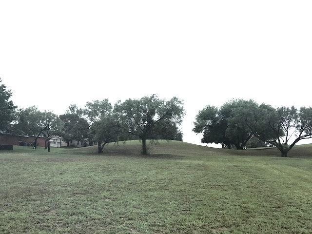 Lot 172 Broadmoor, Meadowlakes, TX 78654 (#2624762) :: Watters International