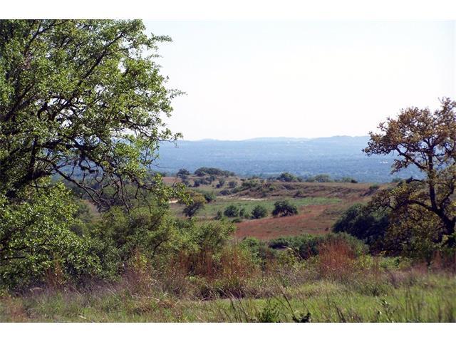 312 Summit Ledge Drive, Johnson City, TX 78646 (#2641698) :: Forte Properties