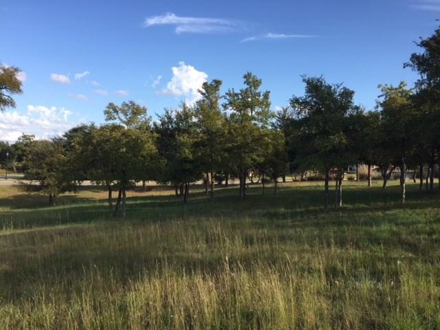 129 Dovetail Ln, Georgetown, TX 78628 (#2651445) :: Forte Properties