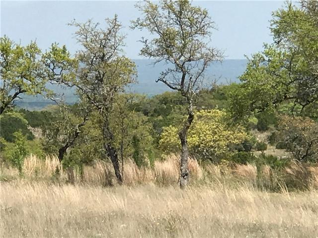 405 Cedar Mountain Dr, Spicewood, TX 78669 (#2690750) :: Forte Properties