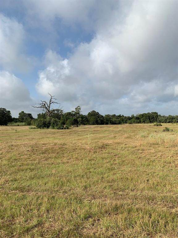 TBD Ott Rd #3, Rosanky, TX 78953 (#2721804) :: Watters International