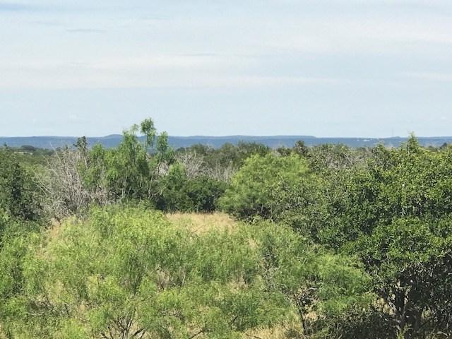 105 Vista View Trl, Spicewood, TX 78669 (#2851788) :: Forte Properties