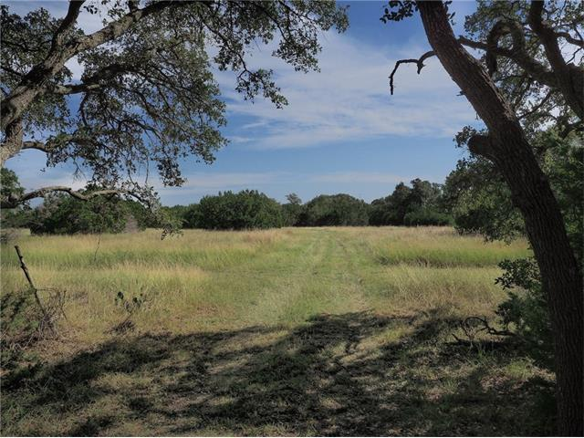 2890 Cedar Hollow Rd, Georgetown, TX 78628 (#2943264) :: Forte Properties