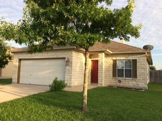 209 Flinn St, Hutto, TX 78634 (#2950495) :: RE/MAX Capital City