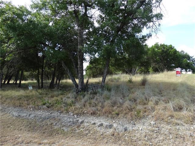 18005 Kingfisher Ridge Dr, Lago Vista, TX 78645 (#2986624) :: The Perry Henderson Group at Berkshire Hathaway Texas Realty