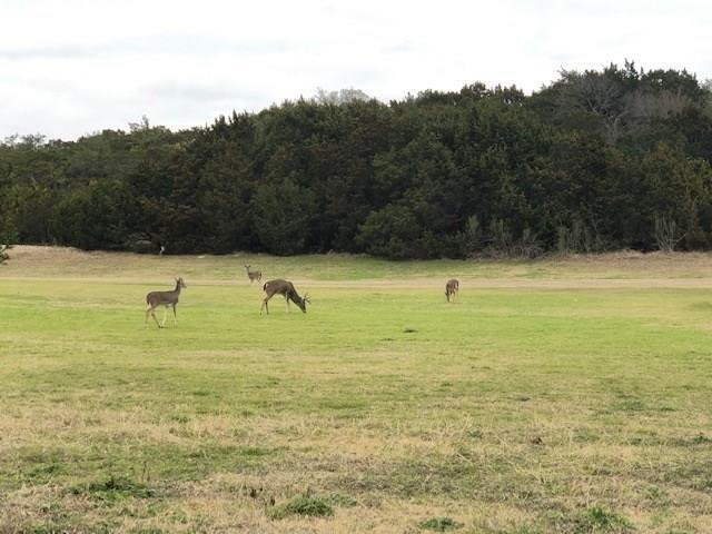 20700 Deep Creek Dr, Lago Vista, TX 78645 (#3007492) :: The Heyl Group at Keller Williams