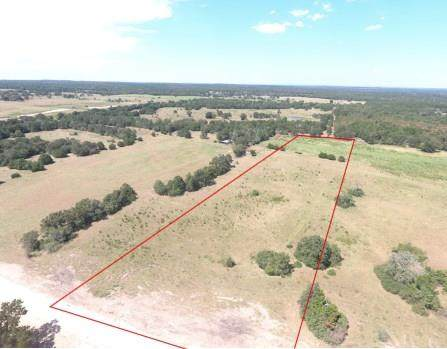 54 Acres Ott Rd - Photo 1