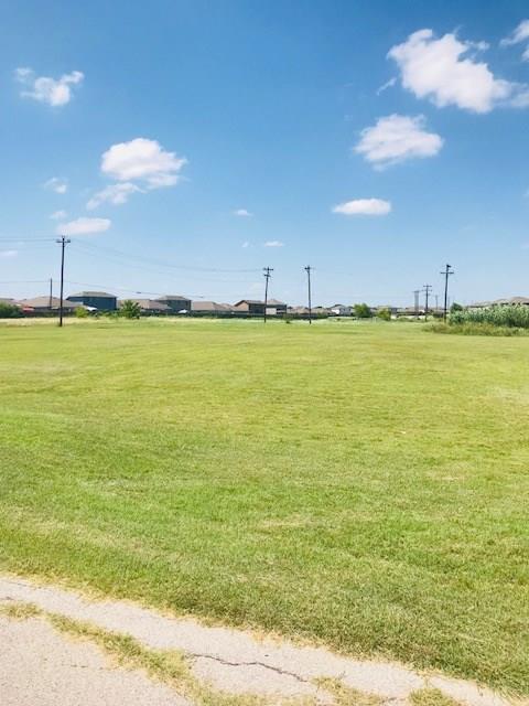 13220 Old Hwy 20, Manor, TX 78653 (#3141316) :: Watters International