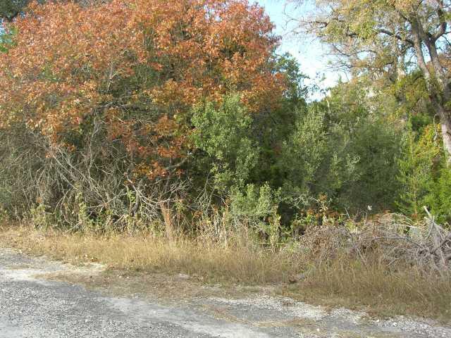 20204 Bowie Cv, Lago Vista, TX 78645 (#3156579) :: Forte Properties