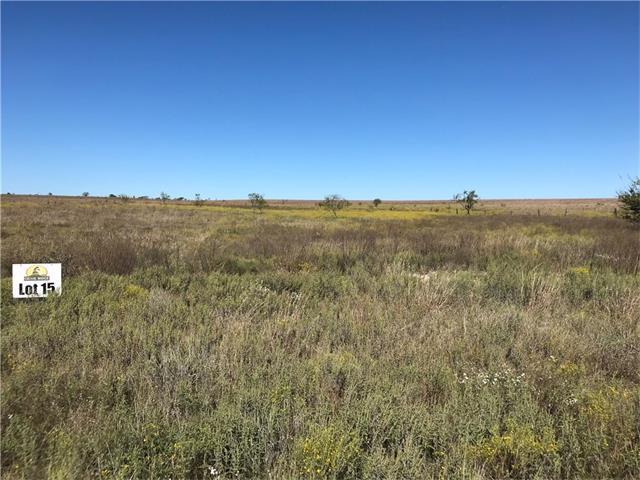 TBD County Road 2323, Lometa, TX 76853 (#3161767) :: Forte Properties