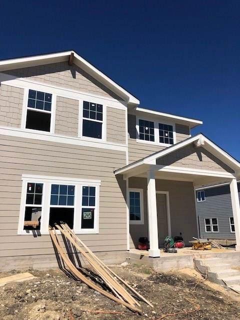 245 Horsemint Way, San Marcos, TX 78666 (#3205844) :: Ana Luxury Homes