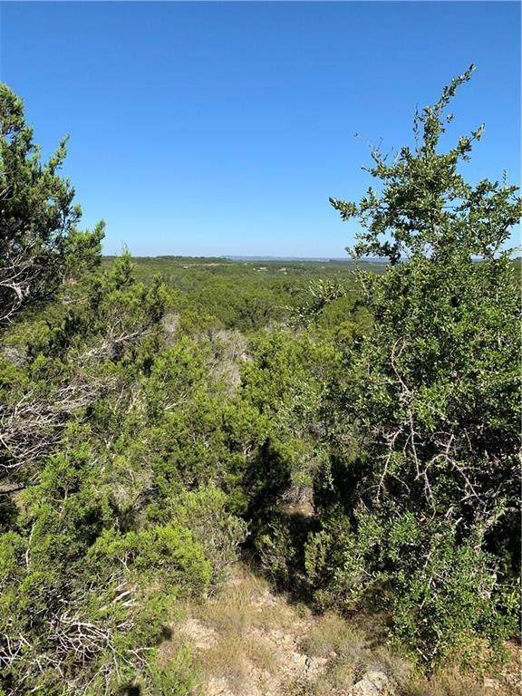 1121 Roy Creek Trl, Dripping Springs, TX 78620 (MLS #3220323) :: Brautigan Realty