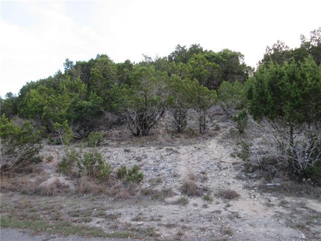 20803 Leaning Oak Dr, Lago Vista, TX 78645 (#3221798) :: Watters International