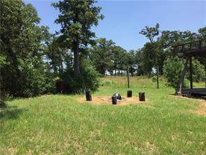 438 Gotier Trace Rd, Smithville, TX 78957 (#3246675) :: The Perry Henderson Group at Berkshire Hathaway Texas Realty