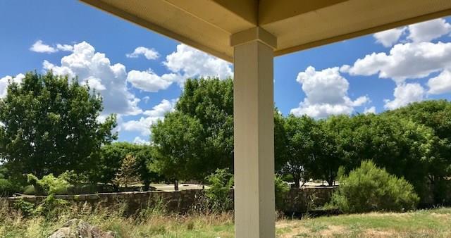 521 Lacey Oak Loop, San Marcos, TX 78666 (#3268457) :: Ana Luxury Homes