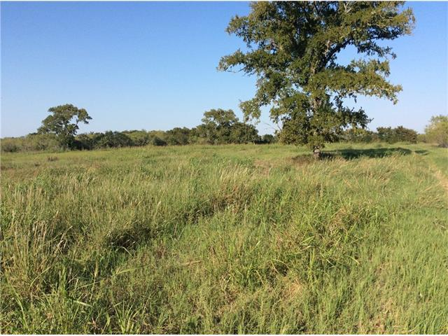 TBD League Line Rd, Smithville, TX 78957 (#3268539) :: Kevin White Group