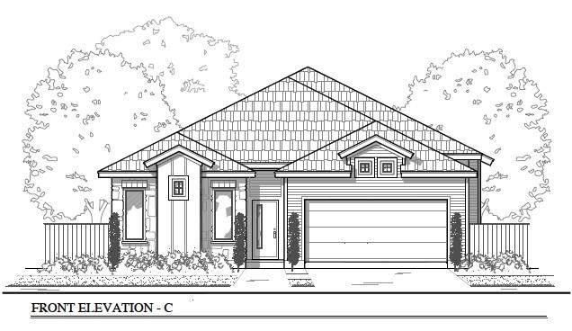 11317 Saddlebred Trl, Manor, TX 78653 (#3298706) :: Papasan Real Estate Team @ Keller Williams Realty