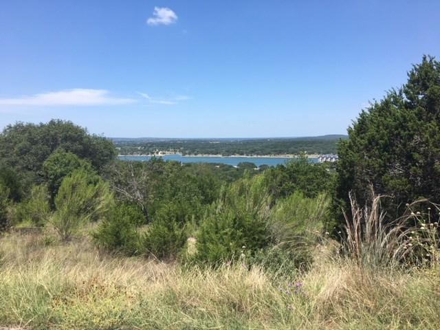 21504 Porter Cv, Lago Vista, TX 78645 (#3346103) :: Forte Properties