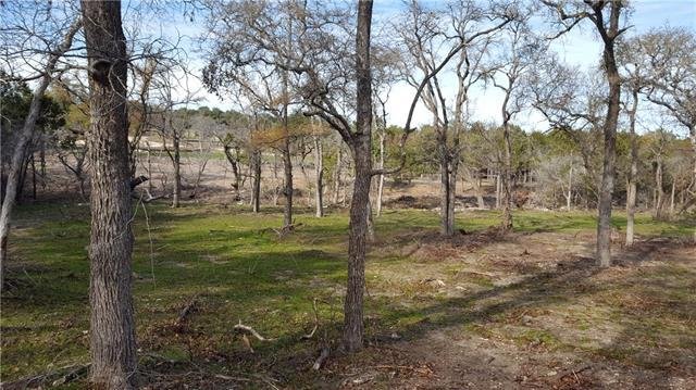 137 Taylor Creek Way, Liberty Hill, TX 78642 (#3349523) :: Forte Properties
