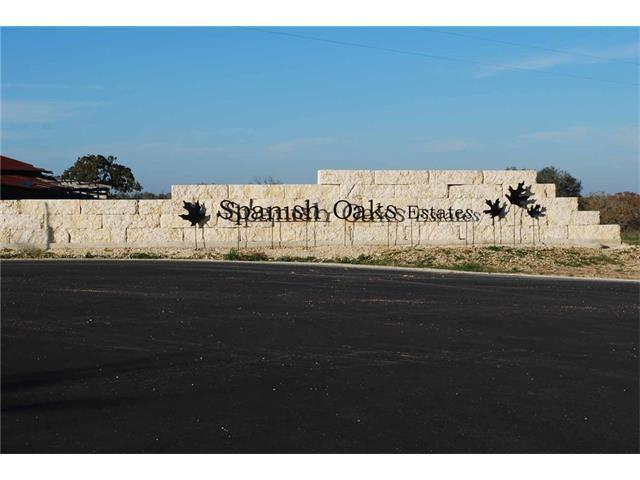 30 Spanish Oaks Blvd, Lockhart, TX 78644 (#3413128) :: The ZinaSells Group