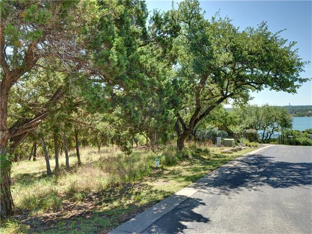 1601 Osprey Ridge Loop, Lago Vista, TX 78645 (#3473168) :: The ZinaSells Group