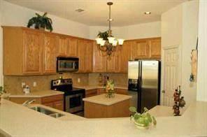 2405 White Stallion Way, Leander, TX 78641 (#3490957) :: 10X Agent Real Estate Team