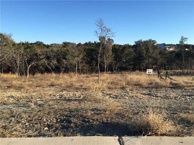 104 Horizon Ridge Cv, Liberty Hill, TX 78642 (#3590290) :: Forte Properties