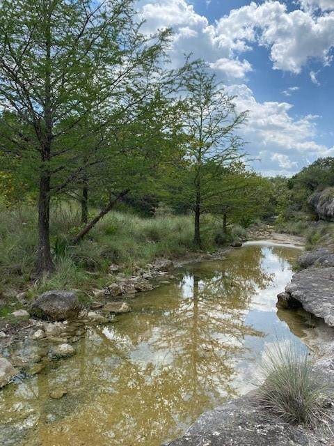 335 Twin Creek Rd, Dripping Springs, TX 78620 (#3605666) :: Resident Realty