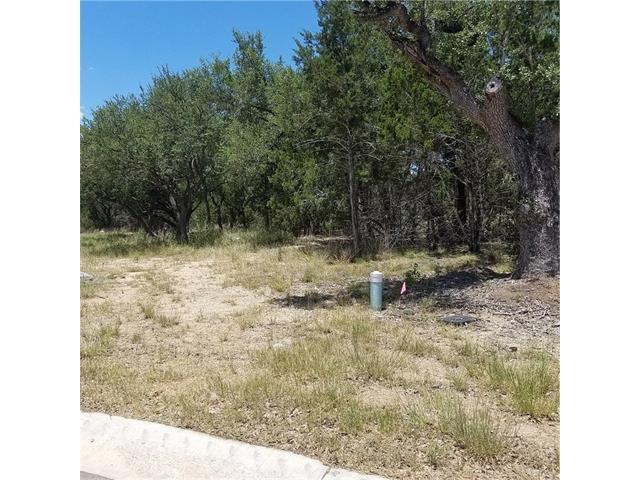 306 Waters Edge Cv, Dripping Springs, TX 78620 (#3615811) :: Forte Properties