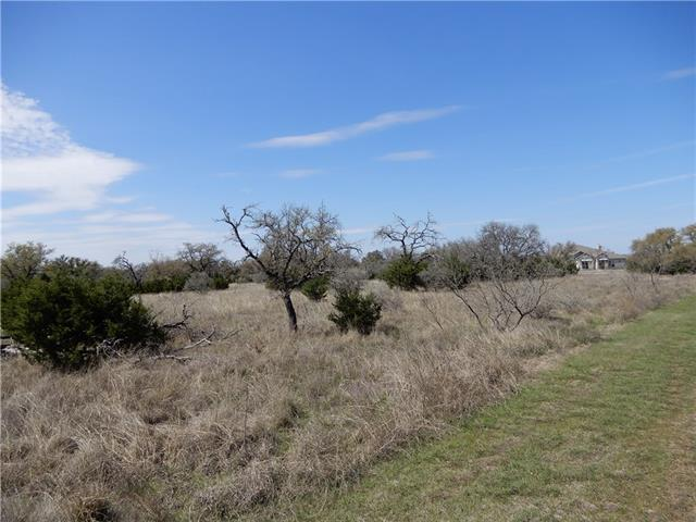 306 Vista View Trl, Spicewood, TX 78669 (#3643838) :: The Gregory Group