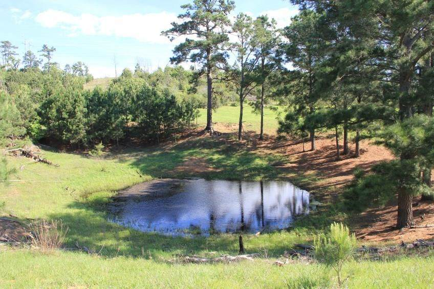 TBD TRACT 13 Gotier Trace Rd - Photo 1