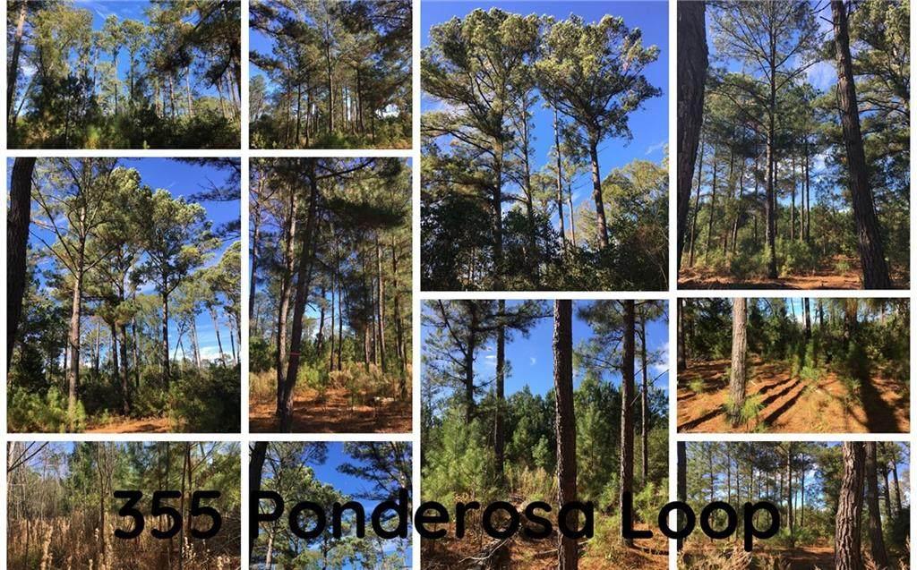 355 Ponderosa Loop - Photo 1