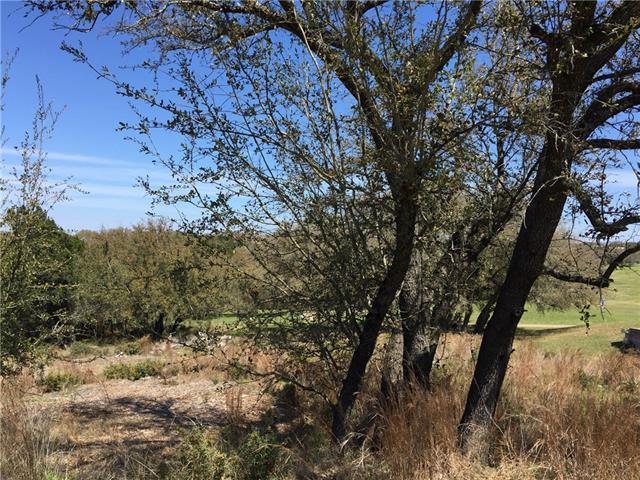 21659 High Dr, Lago Vista, TX 78645 (#3693171) :: Papasan Real Estate Team @ Keller Williams Realty