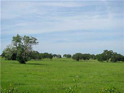 265 Boulton Creek Rd, Muldoon, TX 78949 (#3781606) :: The Perry Henderson Group at Berkshire Hathaway Texas Realty