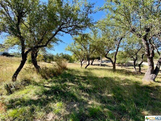 1892 Bella Vis, Canyon Lake, TX 78133 (#3814904) :: Zina & Co. Real Estate