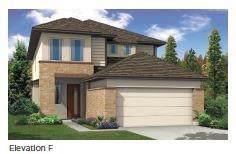 16309 Fetching Ave, Manor, TX 78653 (#3910961) :: Watters International