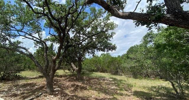 585 Rock Trail Pl, Spring Branch, TX 78070 (#3985086) :: Sunburst Realty