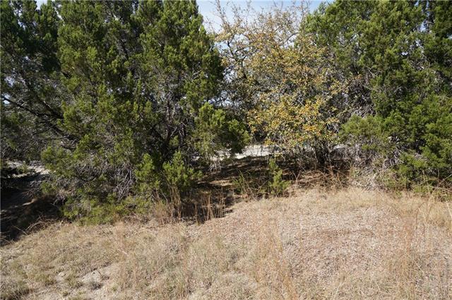 20908 Ridgeview Rd, Lago Vista, TX 78645 (#4090621) :: Forte Properties