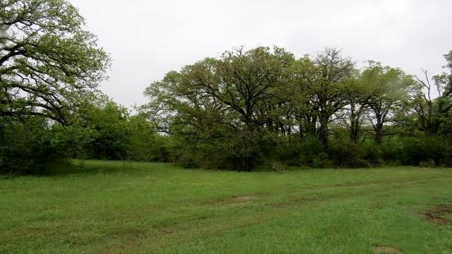 TBD Tbd Fm 908, Other, TX 77836 (#4152164) :: Austin Portfolio Real Estate - The Bucher Group