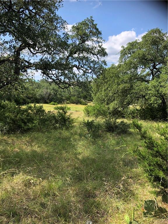 320 Copper Trce, New Braunfels, TX 78132 (MLS #4172696) :: Vista Real Estate