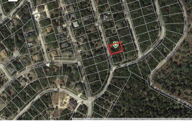3903 Crockett Ave, Lago Vista, TX 78645 (#4172807) :: Forte Properties