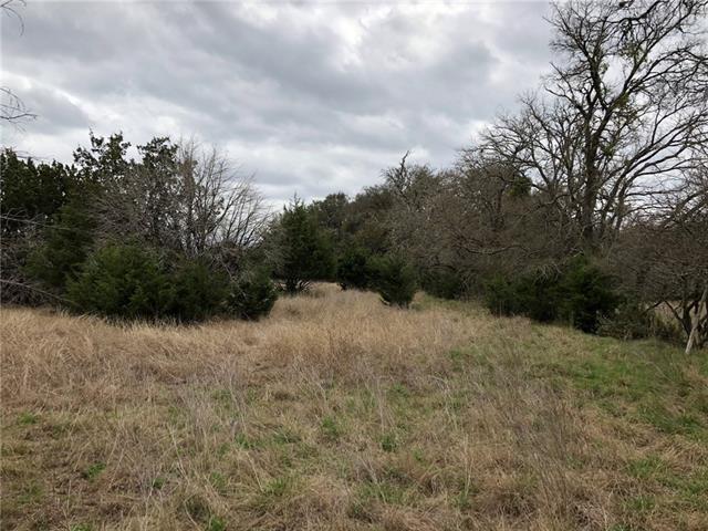 112 and 108 Davis Ln, Georgetown, TX 78633 (#4178661) :: Van Poole Properties Group