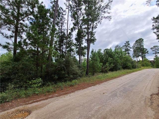 001 Makaha Dr, Bastrop, TX 78602 (#4187603) :: Front Real Estate Co.
