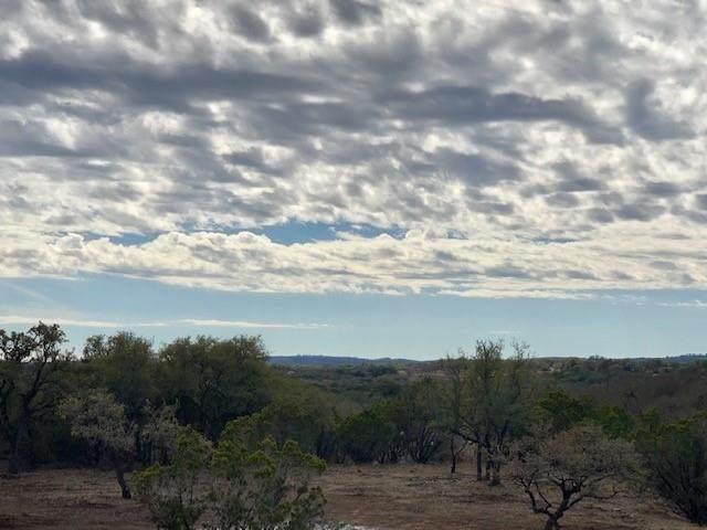 475 Happy Trails, Dripping Springs, TX 78620 (#4202762) :: 12 Points Group