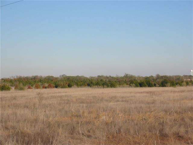 10201 Peterson Rd, Del Valle, TX 78617 (#4218443) :: Papasan Real Estate Team @ Keller Williams Realty